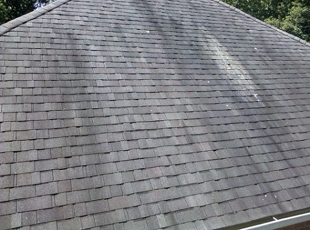 roof types and maintenance procedures